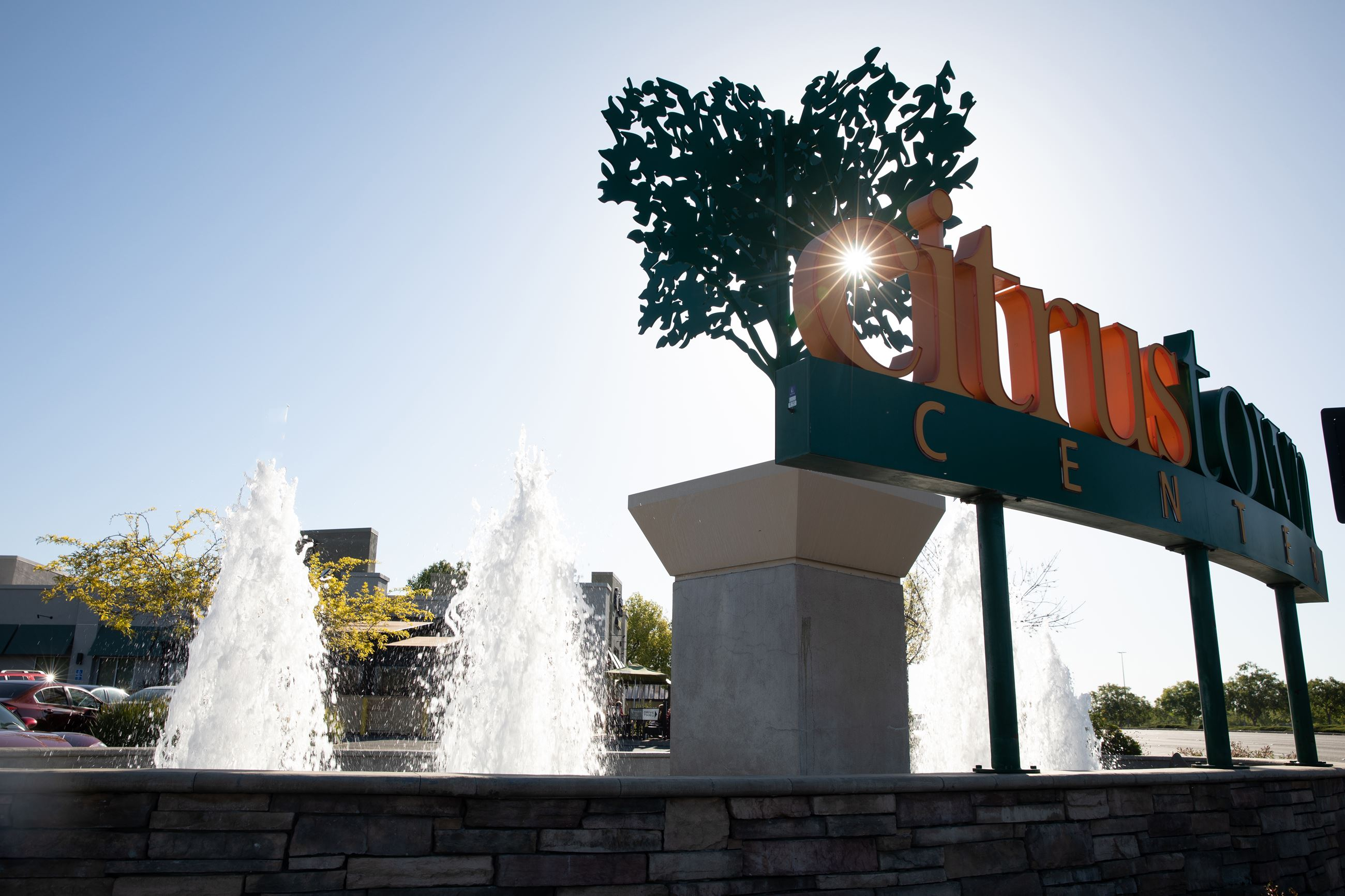 Citrus Town Center Sign