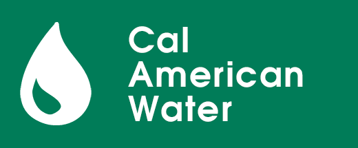Water Cal American Button Opens in new window